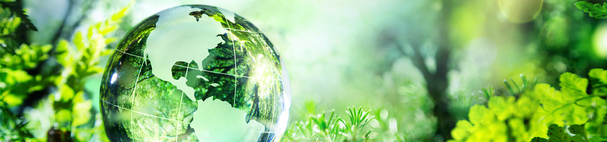 sustainability-banner-1906504831.jpg